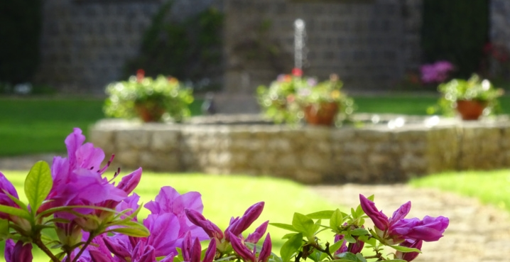 garden of the cloister