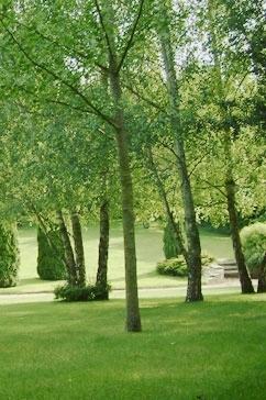 retraite solesmes jardin